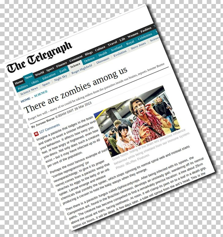 News Of The World Blog Web Page Journalist PNG, Clipart.