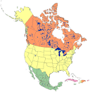 North america clipart map.