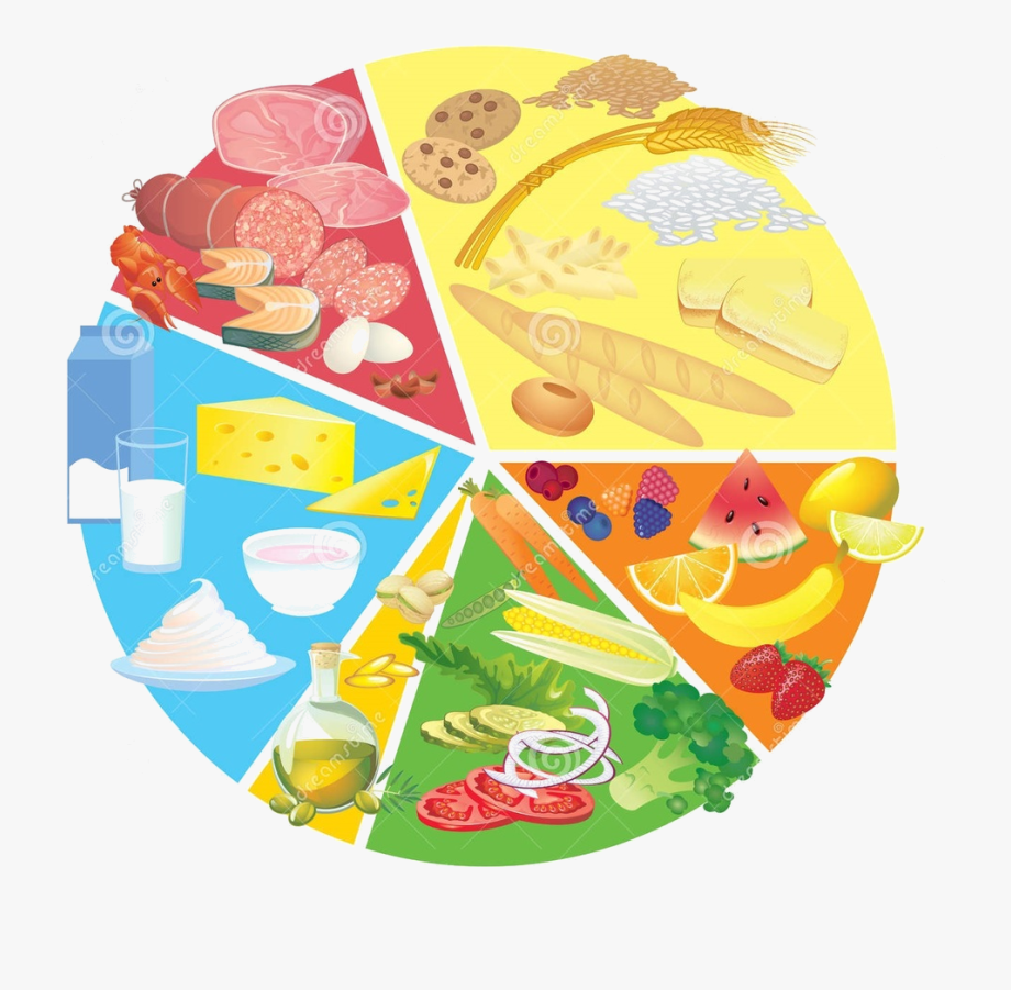 Nutrition Icon Png.