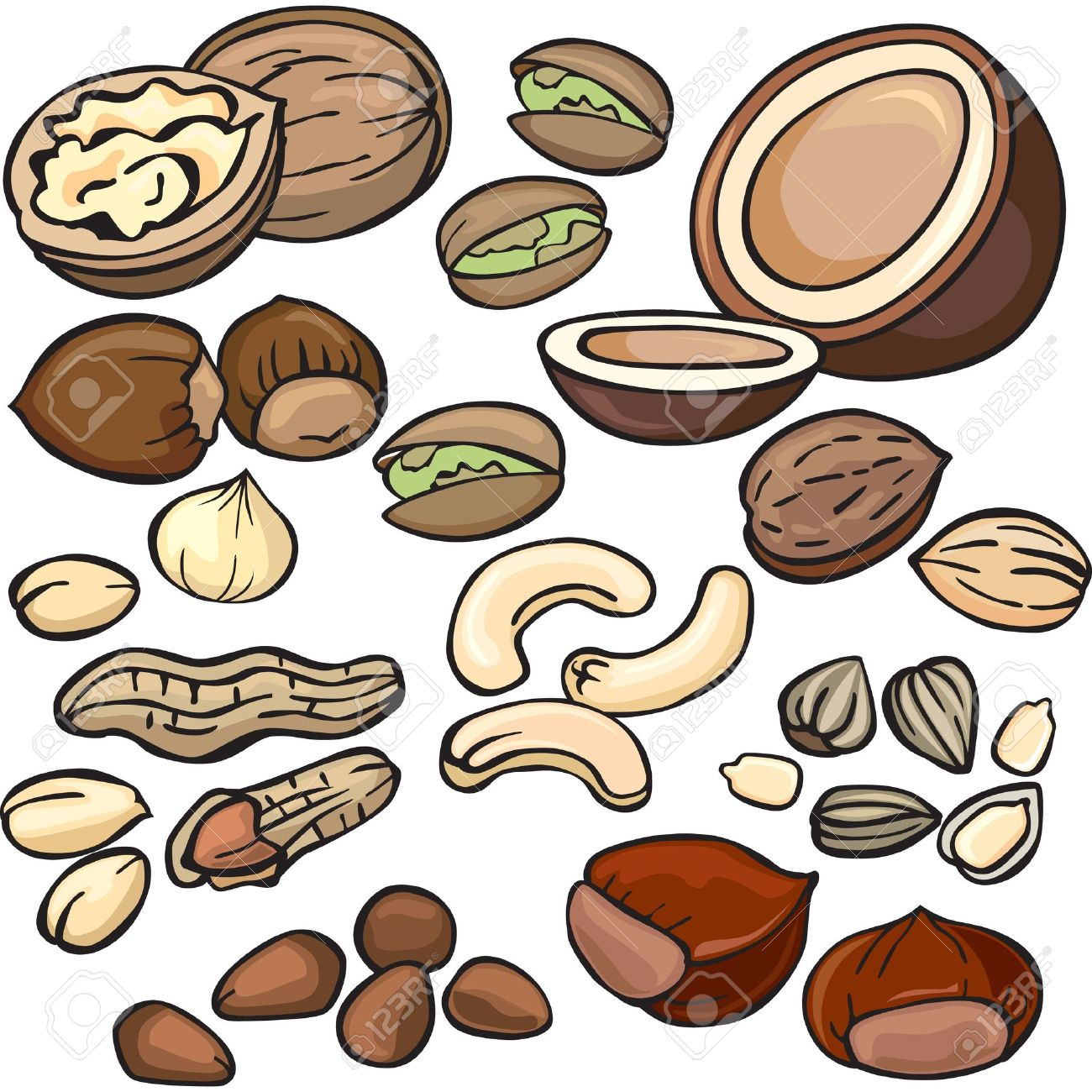 Nuts clipart 2 » Clipart Station.
