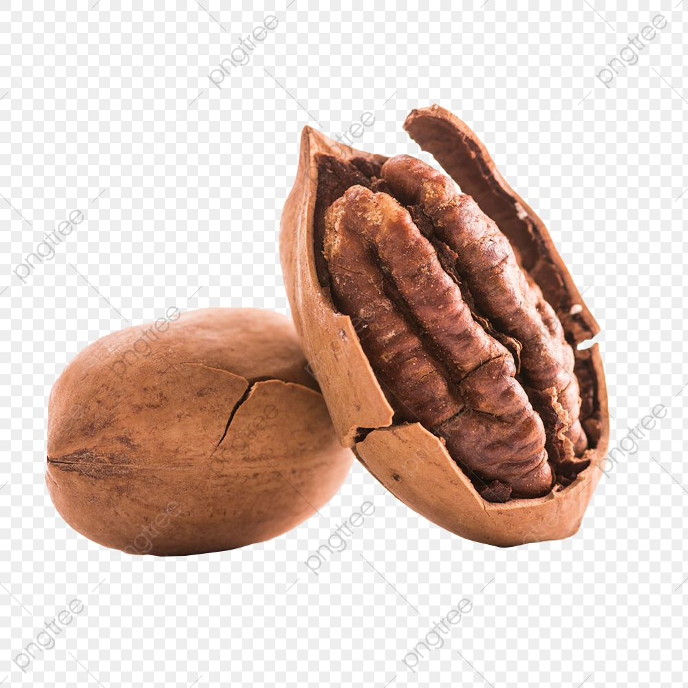 Stripped Pecans, Peel, Pecans, Nutshell PNG Transparent Image and.