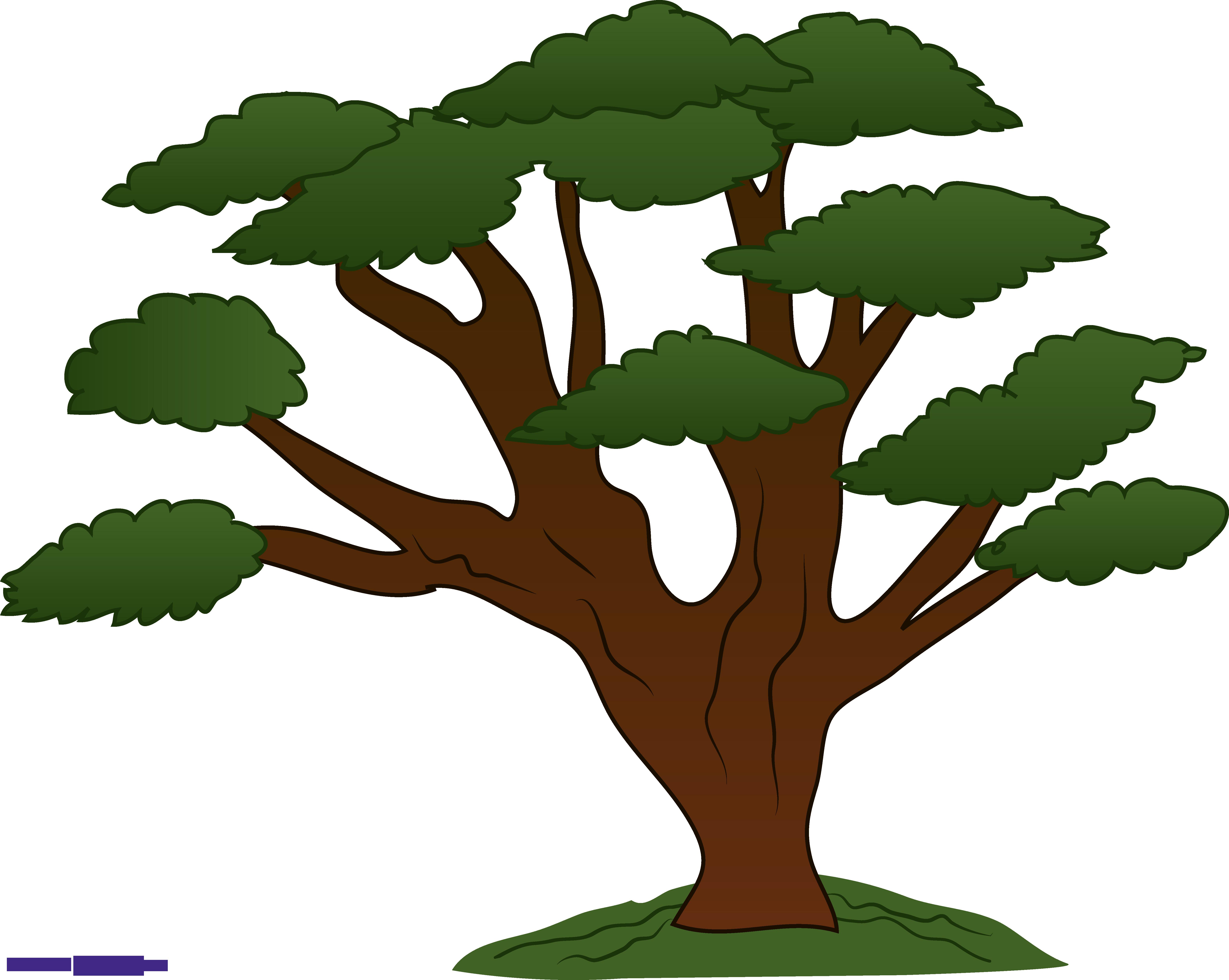 Tree Sweeping Oak Clipart.