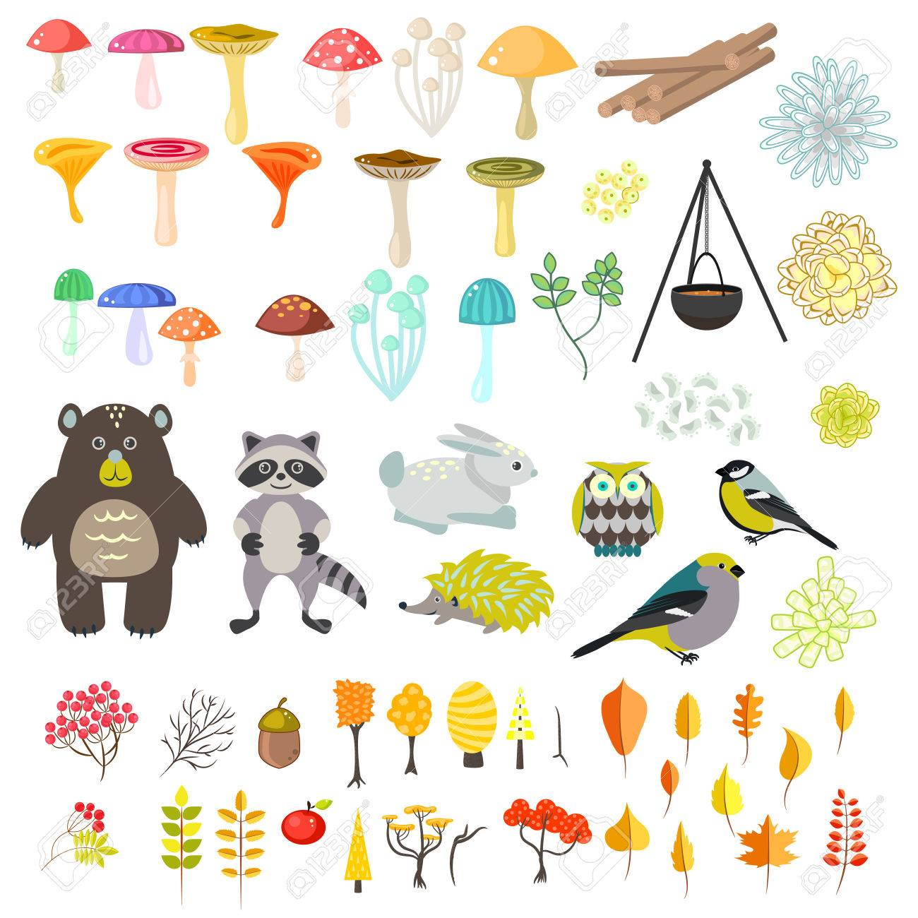 Animals and nature vector clipart objects. Cartoon forest animals,...