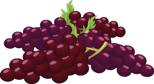 Bunch Of Grapes Clip Art at Clker.com.