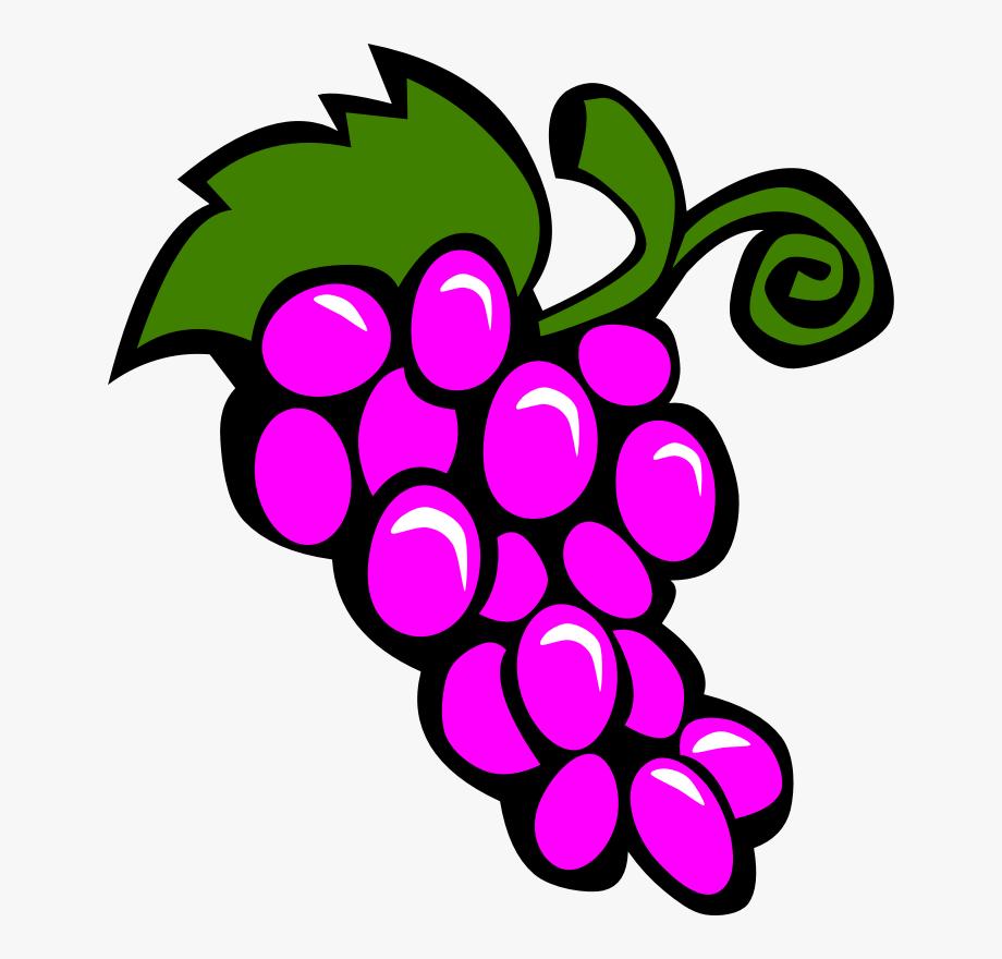 Grapevine Clipart Fruit Vine.