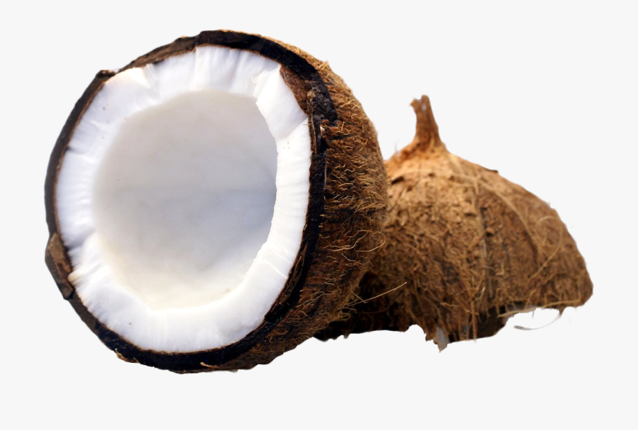 Coconut Clipart Coconut Half.