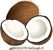 Coconut Clip Art.