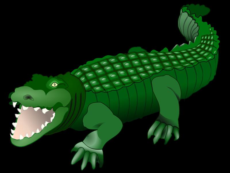 Free Clipart: Crocodile.