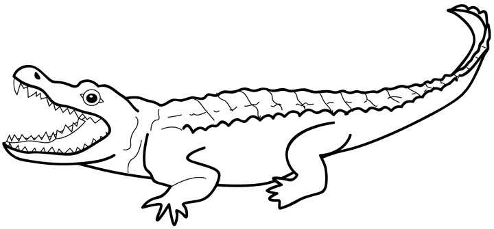Free Crocodile Cliparts, Download Free Clip Art, Free Clip Art on.