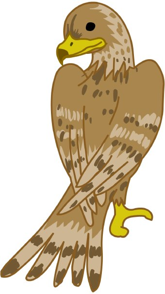Falcon clip art at vector image 2.
