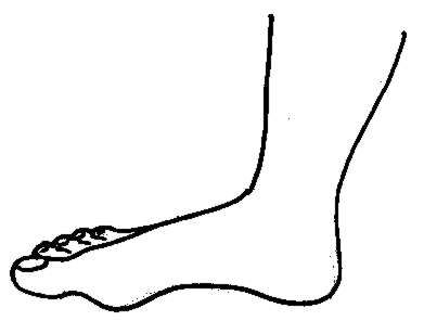 Free Foot Cliparts, Download Free Clip Art, Free Clip Art on.