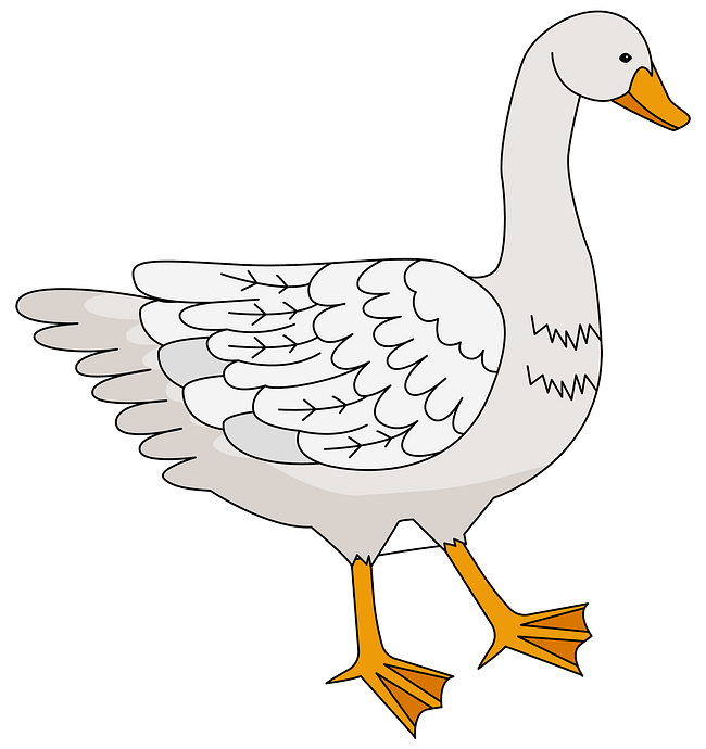 Goose clipart. Free download..