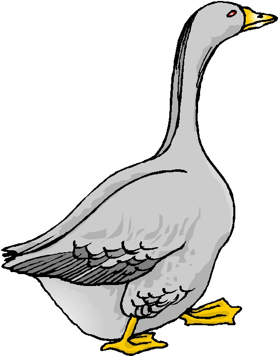 Free Goose Cliparts, Download Free Clip Art, Free Clip Art.
