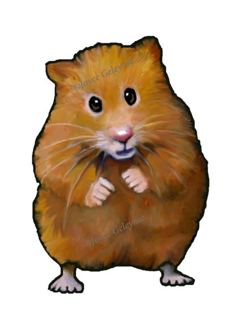 Clip Art: Hand Drawn Hamster, Animal Clipart, Freehand Color Pencil  Drawing, Commercial Use Clipart, jpg and png files, INSTANT DOWNLOAD.