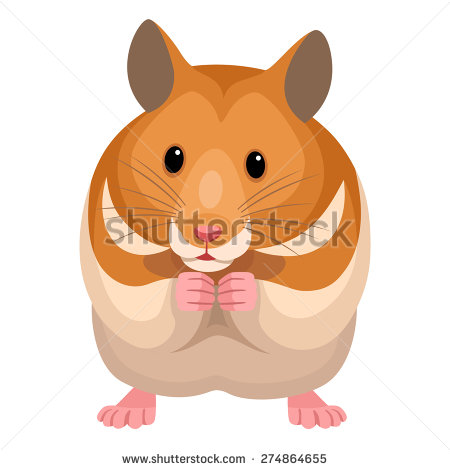 Hamster clipart 9 » Clipart Station.