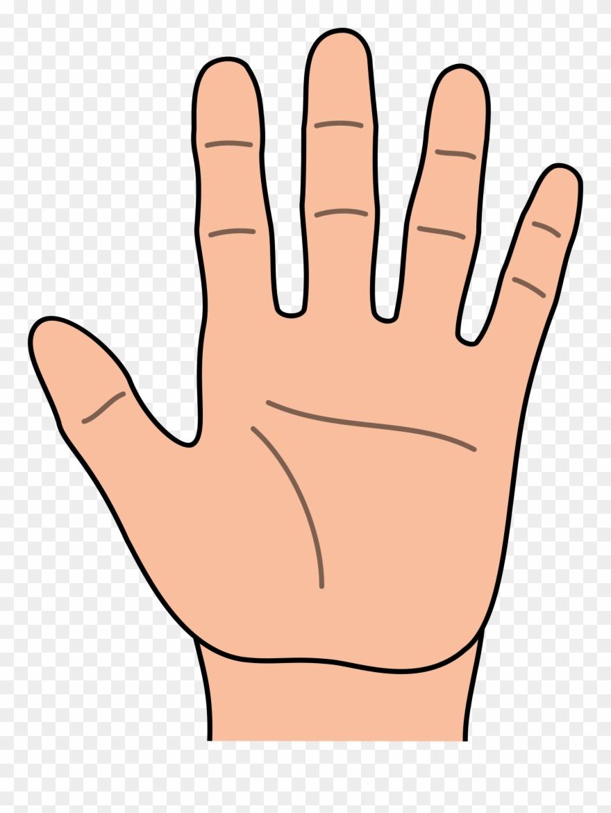 Hands Clipart.