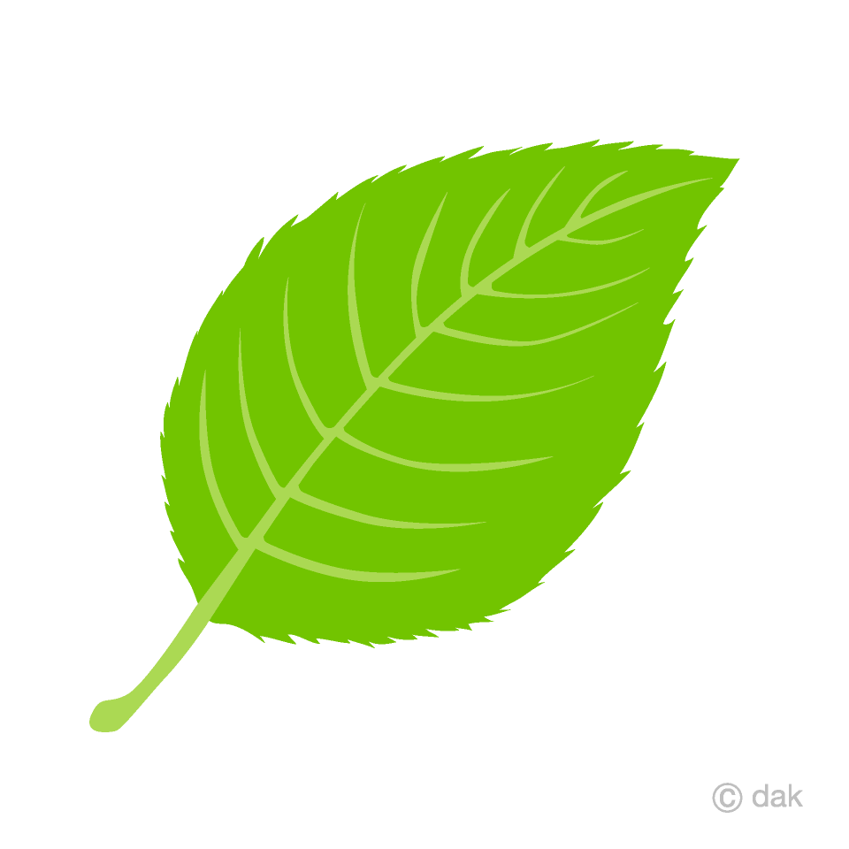 Free Leaf Clipart Image|Illustoon.