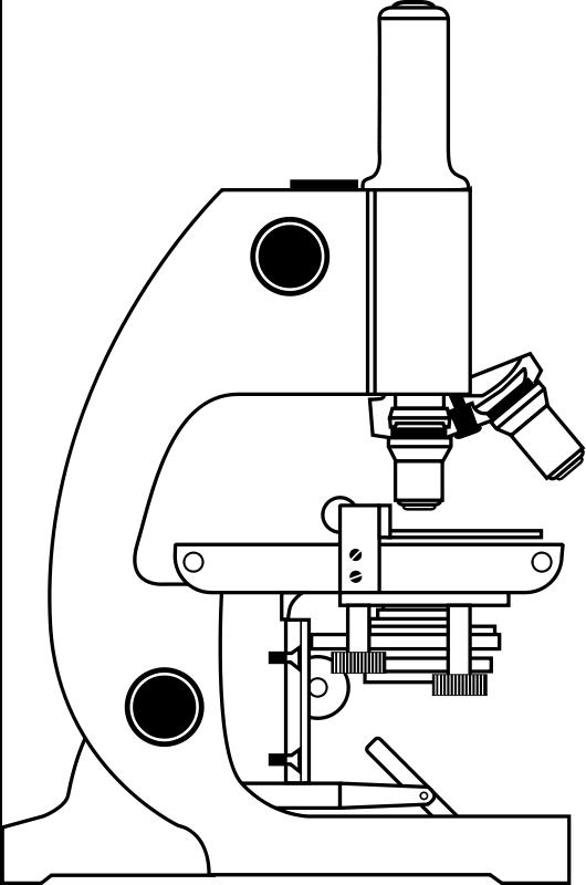 Free Clipart: Microscope.