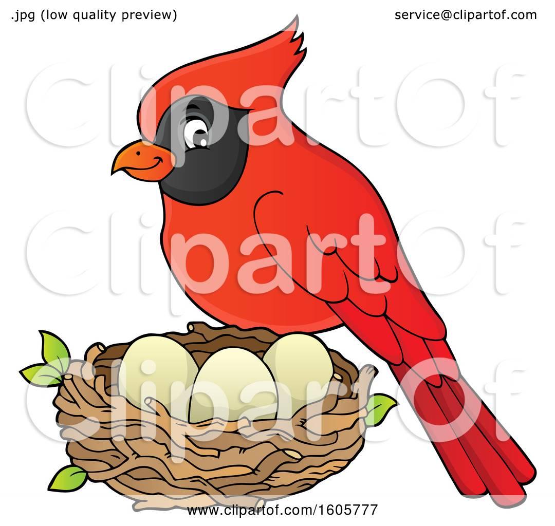 Clipart of a Red Cardinal Bird by a Nest.