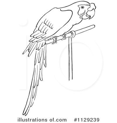 Parrot Clipart #1129239.