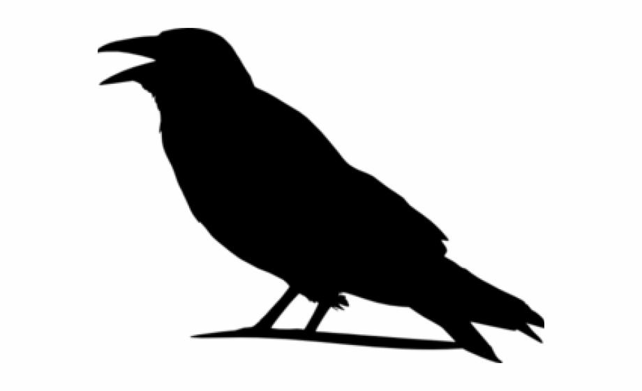 Raven Outline Cliparts.