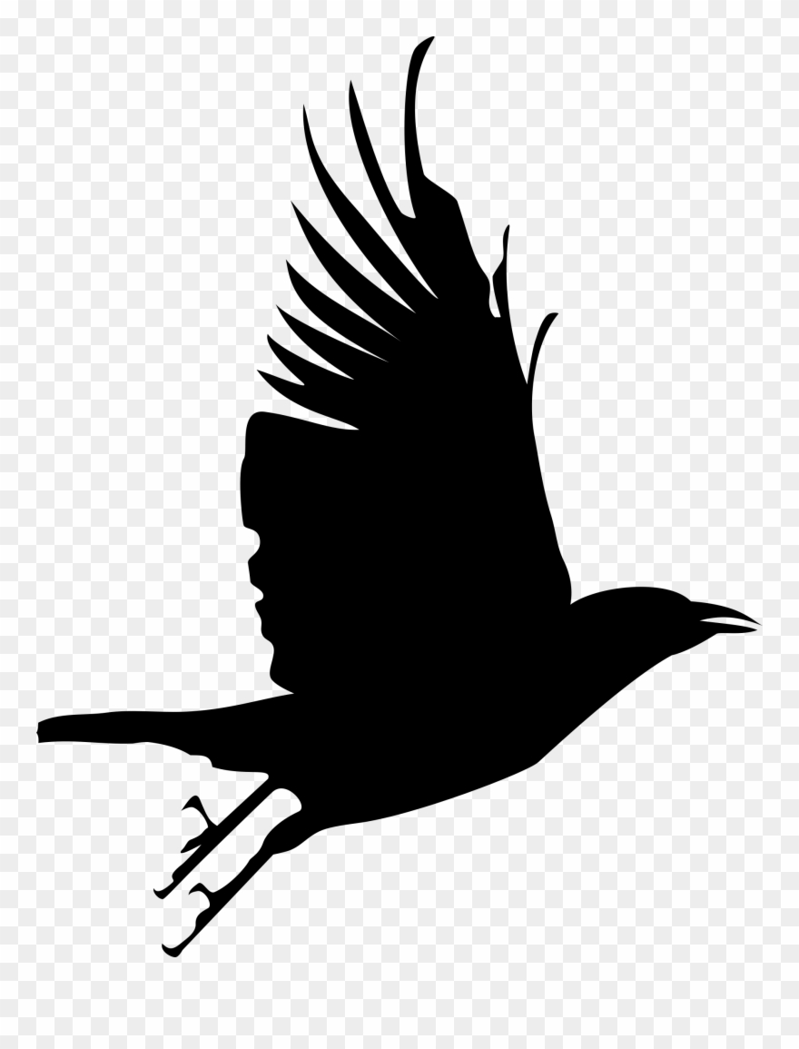 Cute Raven Cliparts.
