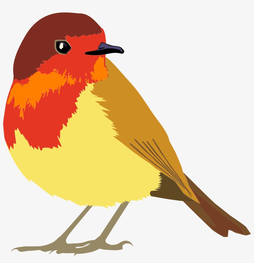 Vector Transparent Download Clipart Robin Bird.