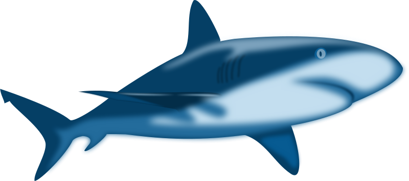 Free Clipart: Shark Shaded.