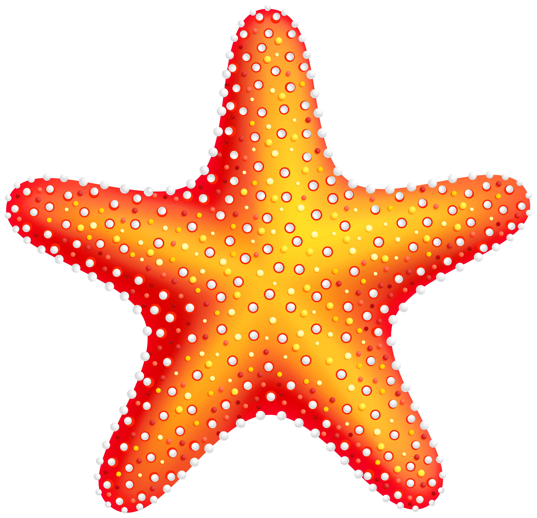Starfish PNG Clip Art.