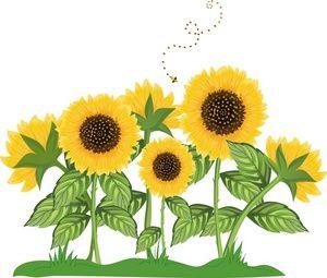 Sunflower Border Clip Art.
