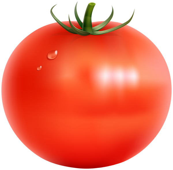 Pasta clipart tomato sauce, Pasta tomato sauce Transparent.