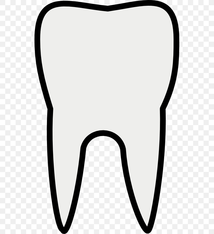 Tooth Photography Clip Art, PNG, 555x898px, Watercolor.
