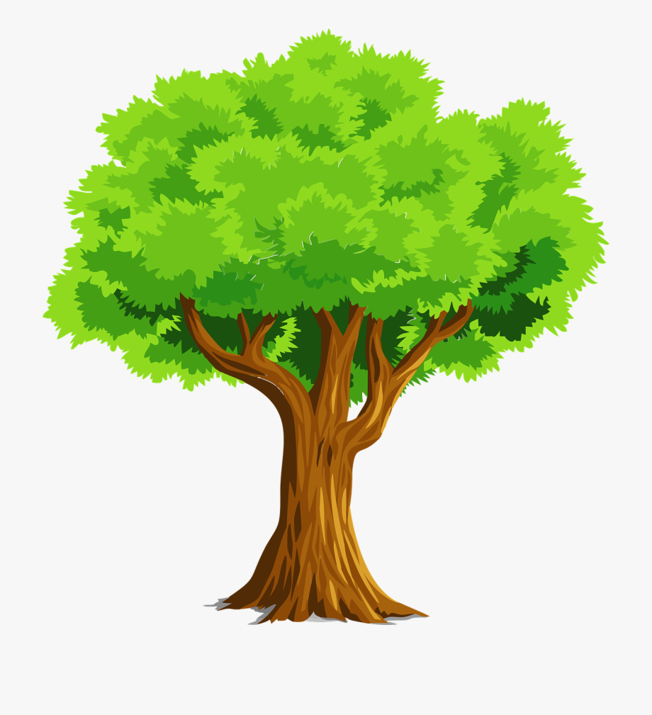 Free To Use Amp Public Domain Trees Clip Art Www.