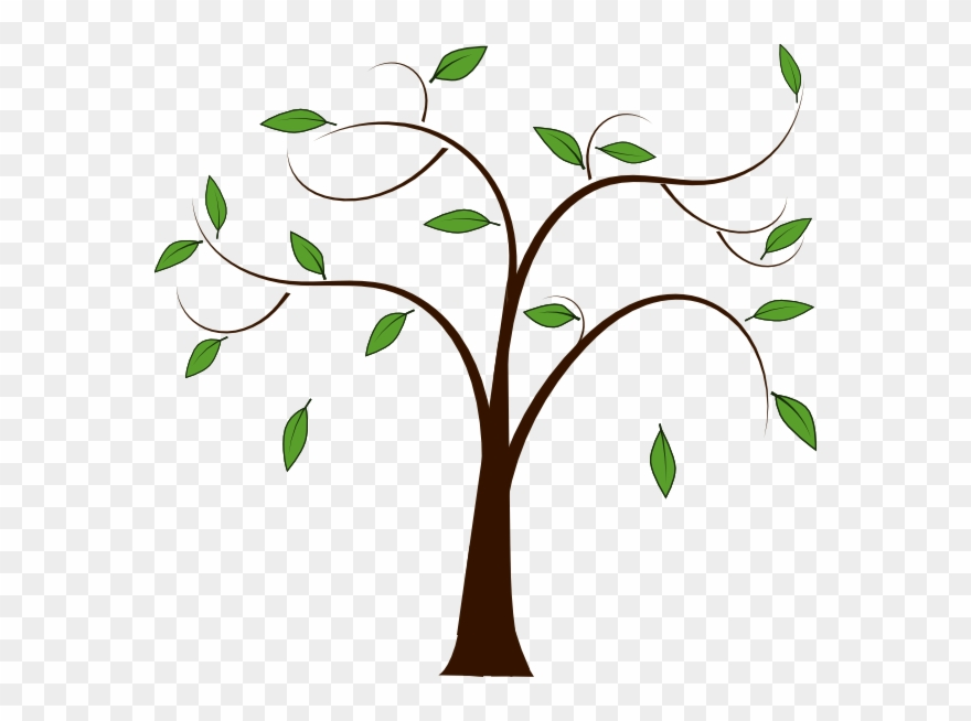 Branch Clipart Family Tree.