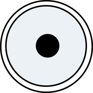 Nucleus Clip Art at Clker.com.