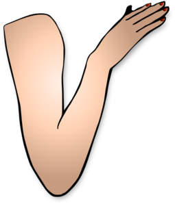 Arm Clipart Free.