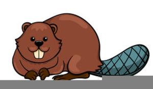 Free Clipart Of Beavers.