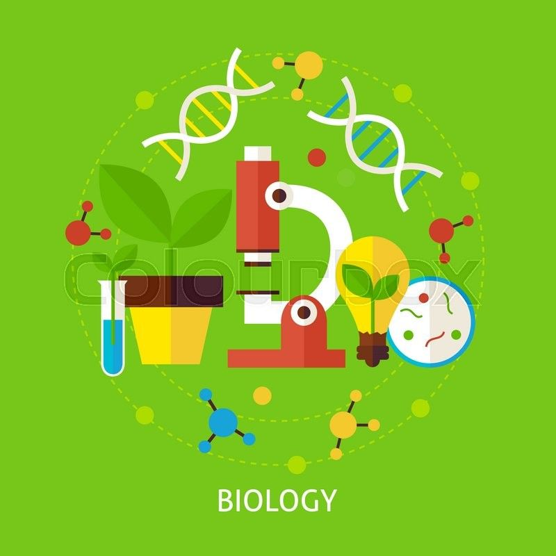 Biology clipart 4 » Clipart Station.