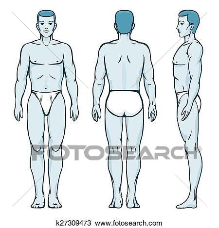 Clipart Of Body Of Man & Clip Art Images #26246.