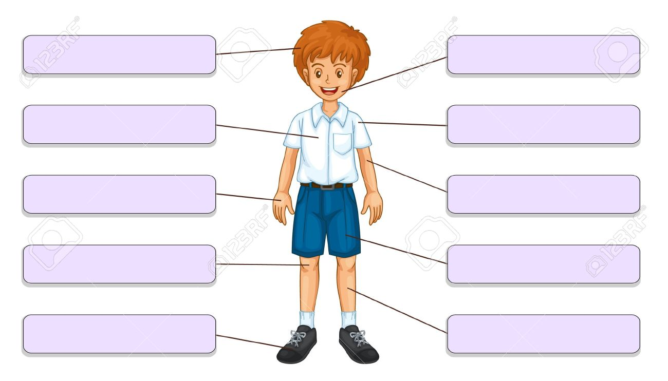 Clipart of body 6 » Clipart Station.