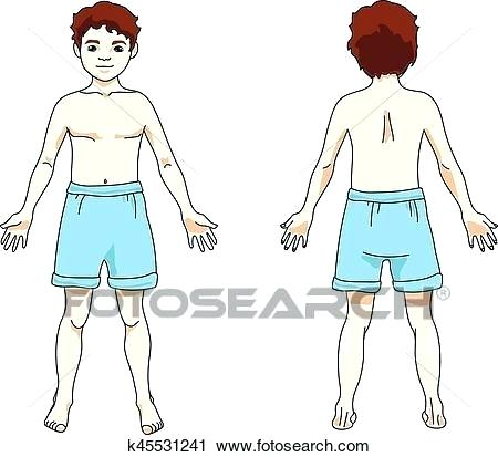 clipart of body.