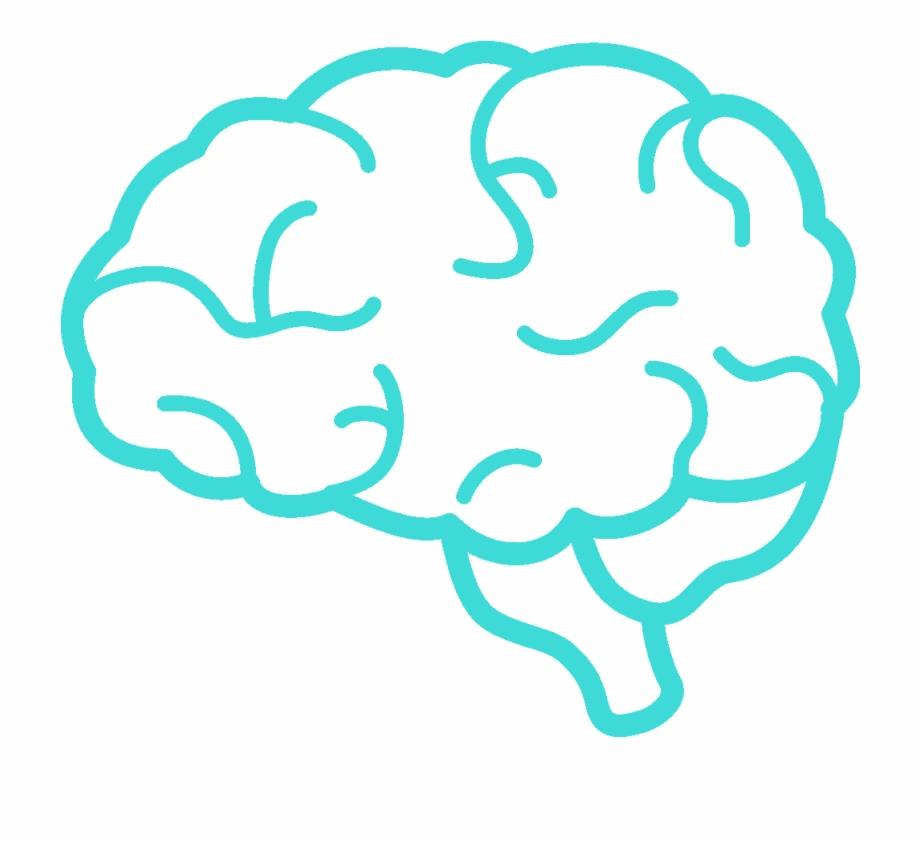 Simple Clip Art Brain , Png Download.