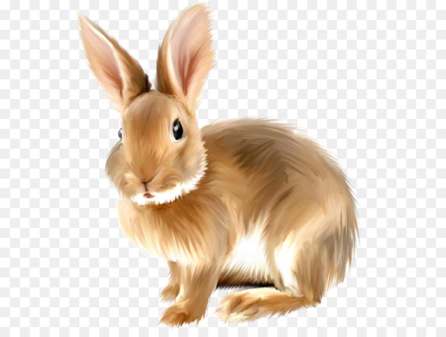 Bunnies clipart clip art, Bunnies clip art Transparent FREE.