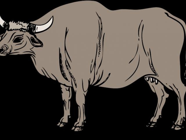 Bulls Clipart Philippine Carabao.