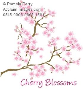 Clip Art Illustration of a Cherry Blossom Branch.