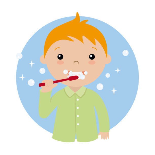 Best Brushing Teeth Illustrations, Royalty.