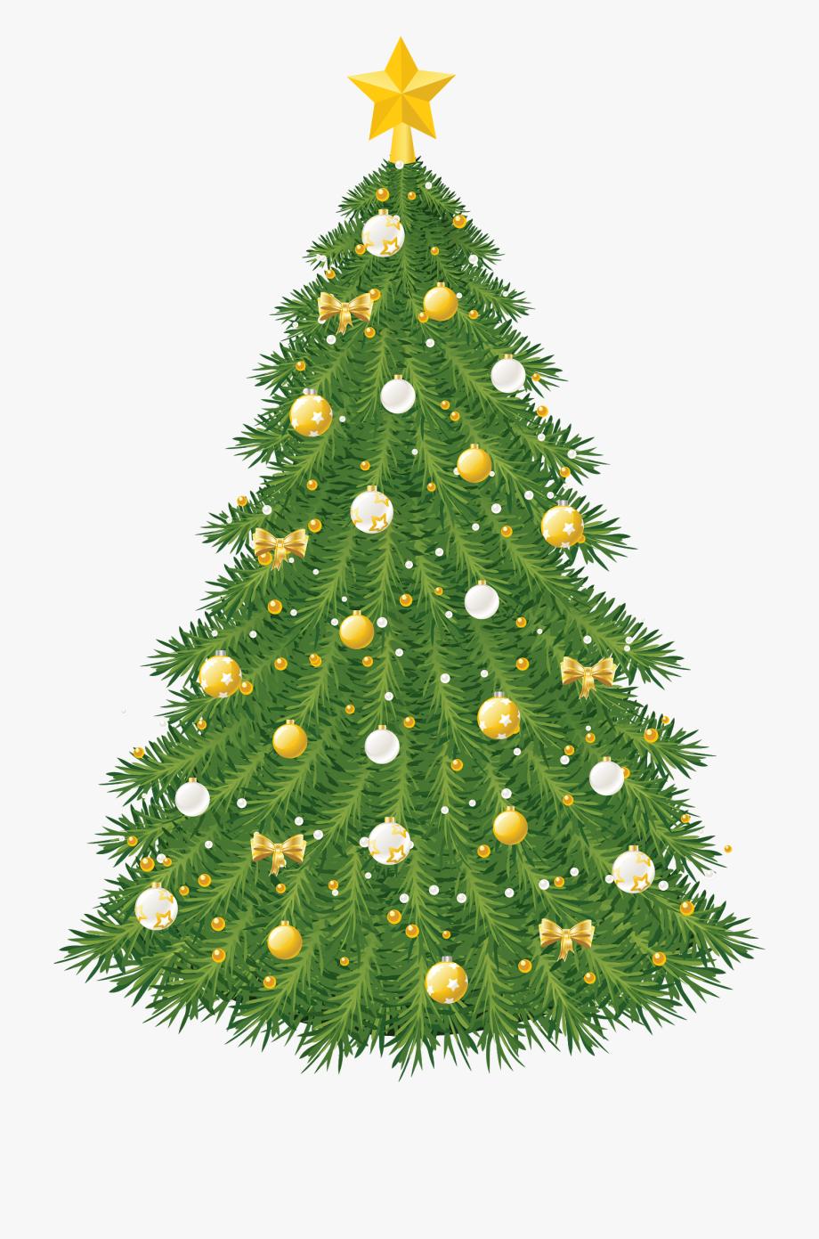 Christmas Tree Clipart, Real Christmas Tree, Christmas.