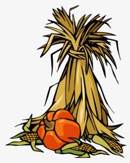 Free Corn Stalk Clip Art with No Background.