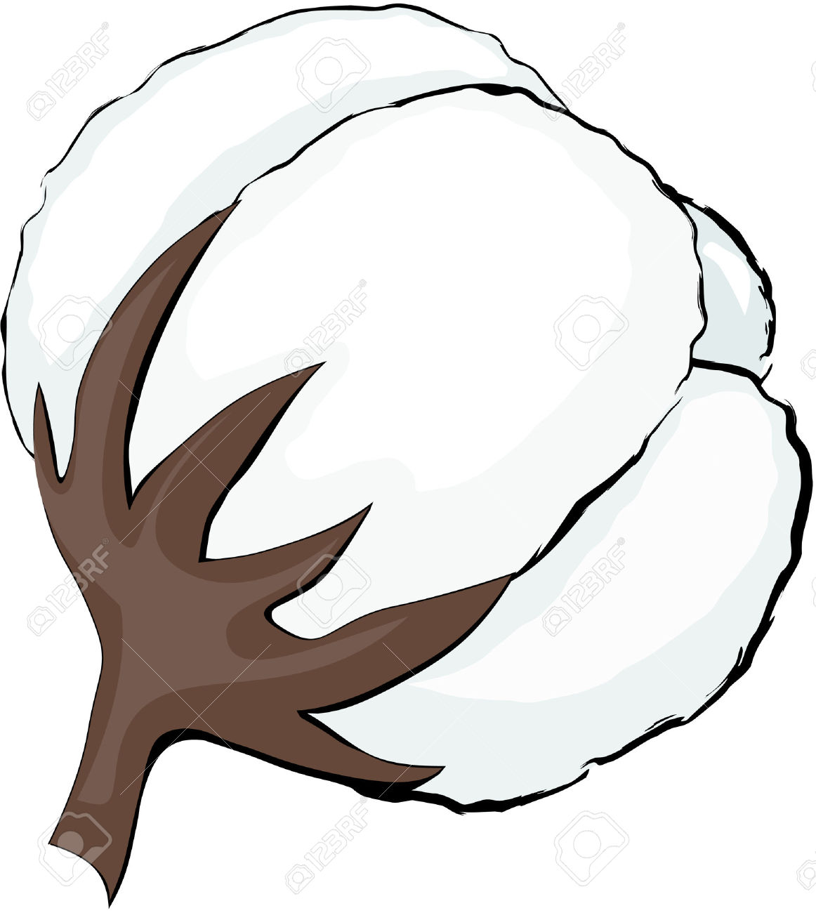 Clipart Of Cotton.