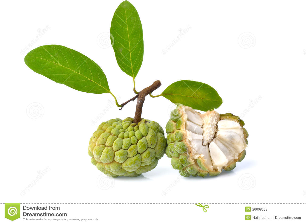 Two Sugar Apple And Leaves Royalty Free Stock Photography.